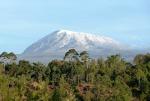 Kilimanjaro, Africa's Highest Peak