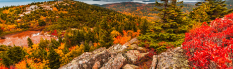 7 Autumn Hiking Destinations in the US including Acadia National Park